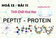 Tính chất hoá học, công thức cấu  tạo của Peptit và Protein - hoá 12 bài 11